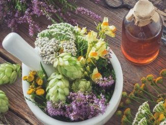Ministry of AYUSH sets up Regional Facilitation Centre for Medicinal Plants Sector at Pune