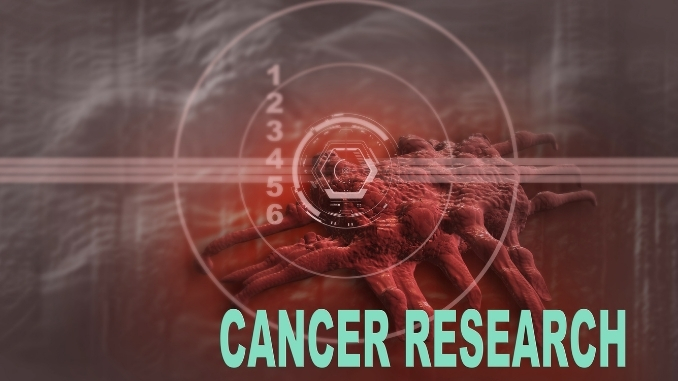 Researchers discover the molecular link between diet, risk of cancer