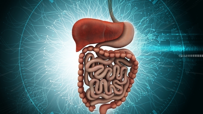 Irritable bowel syndrome(IBS) with constipation can be cured by new treatment