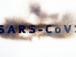 SARS-CoV-2 may seize human cells