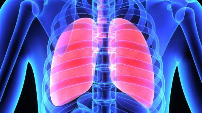 Study of lung function sheds light on ventilator-induced lung injuries