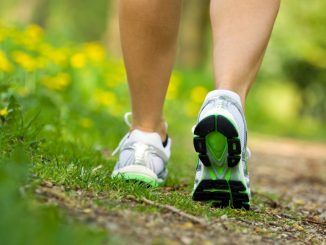Benefits of walks in greenspaces can reduce your work-related stress
