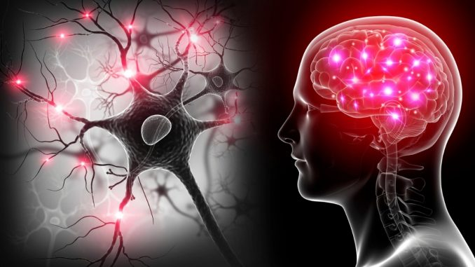 Tiny population of neurons may have big role in depression