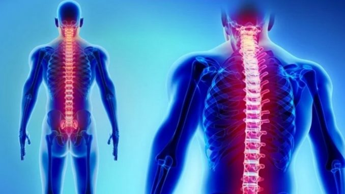 Engineers develop wireless implant stimulators for spinal cord, heart therapies