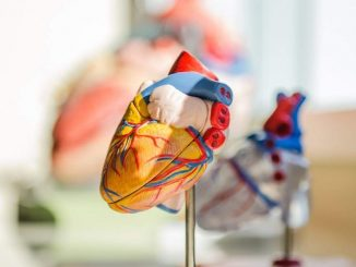 World Heart Day Healthy lifestyle can preempt future heart ailments Digpu News CriBrG